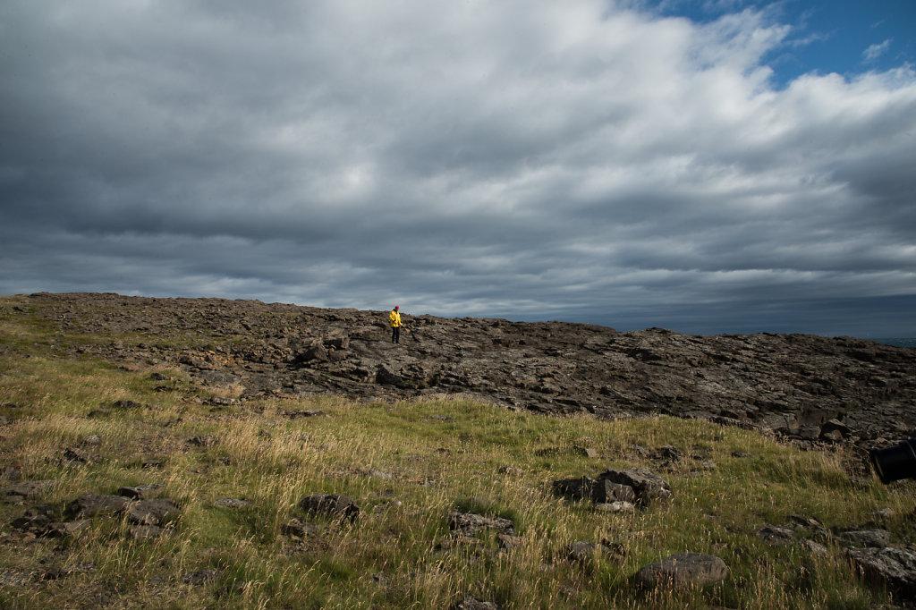 20170817-Iceland-17-7309.jpg